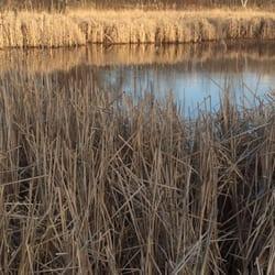 Zone de conservation d'Edna Taylor