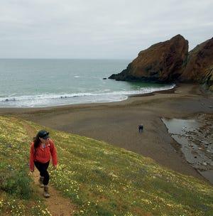 Du centre-ville de San Francisco, vous pouvez littéralement marcher jusqu'à un réseau de sentiers de randonnée dans les Marin Headlands à l'extrémité nord du Golden Gate Bridge.