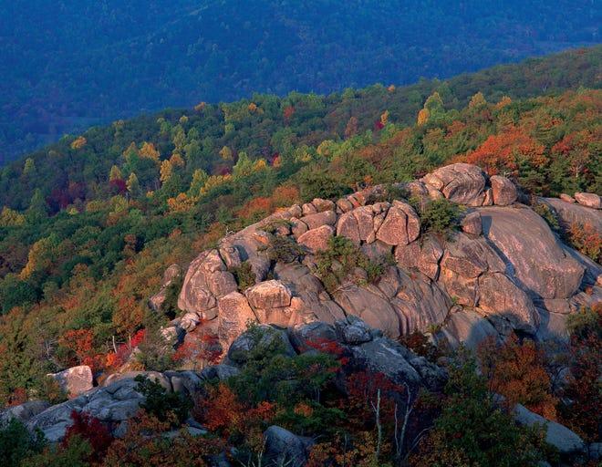 Le sentier Old Rag Mountain dans le parc national de Shenandoah, en Virginie, offre aux randonneurs une ascension pittoresque à travers la forêt dense des Appalaches, se terminant par une course de rochers avec vue sur les montagnes Blue Ridge.