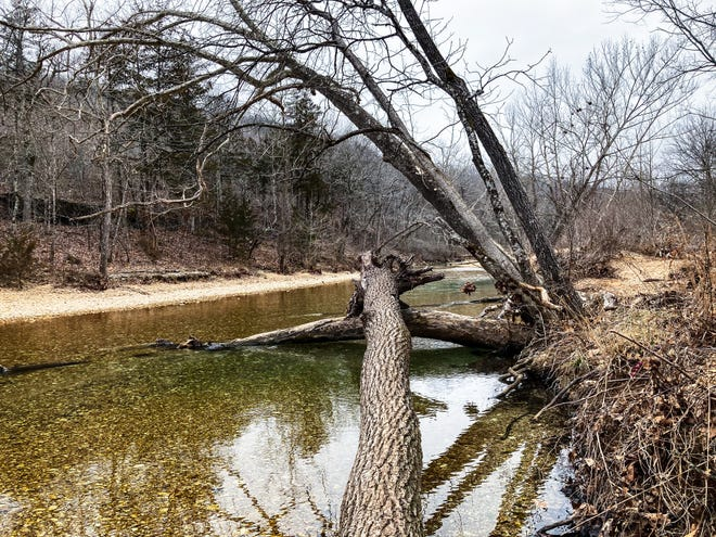 L'eau coule à travers un passage à niveau à Busiek State Forest and Wildlife Area le 7 février 2021.